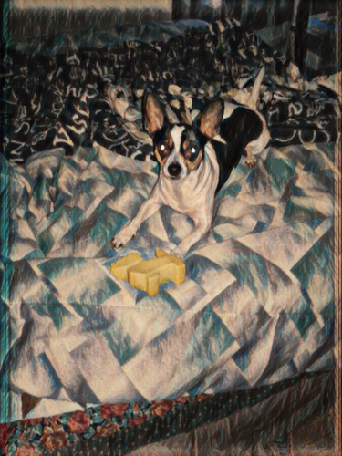 Chihuahuas 壁紙 titled IMG 20170105 020308