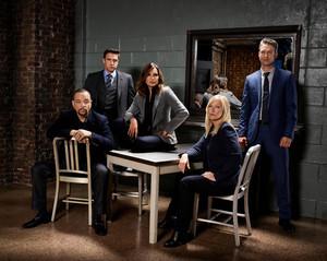 Law and Order: SVU - Season 19 Portrait
