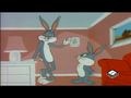 Looney Tunes - looney-tunes photo