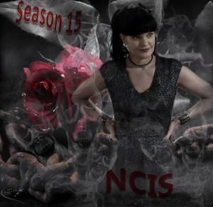 NCIS - Unità anticrimine S15 Abby September 2017