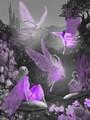 Purple Fairies - fairies fan art