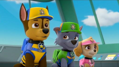 PAW Patrol wallpaper entitled Rocky