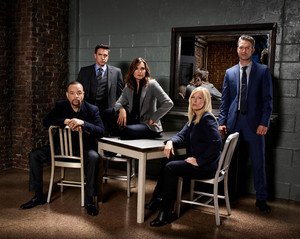 SVU Season 19 Cast Portrait
