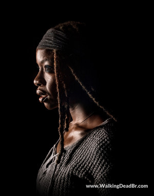 Season 8 Character Portrait #2 ~ Michonne
