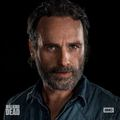 Season 8 Portrait ~ Rick - the-walking-dead photo