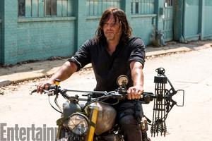 Season 8 Promotional foto ~ Daryl