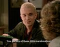 Spike and the mini marshmallows - buffy-the-vampire-slayer photo