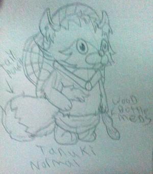 Tanuki Pokemon