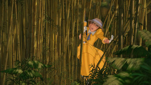 Tarzan 1999 BDrip 1080p ENG ITA x264 MultiSub Shiv .mkv snapshot 00.32.03 2017.10.20 14.50.00