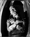The Mummy - universal-monsters photo