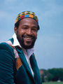 The Prince Of Soul  - marvin-gaye photo