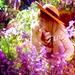 The Secret Garden icon - the-secret-garden icon