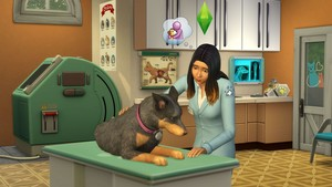 The Sims 4: Kucing and Anjing