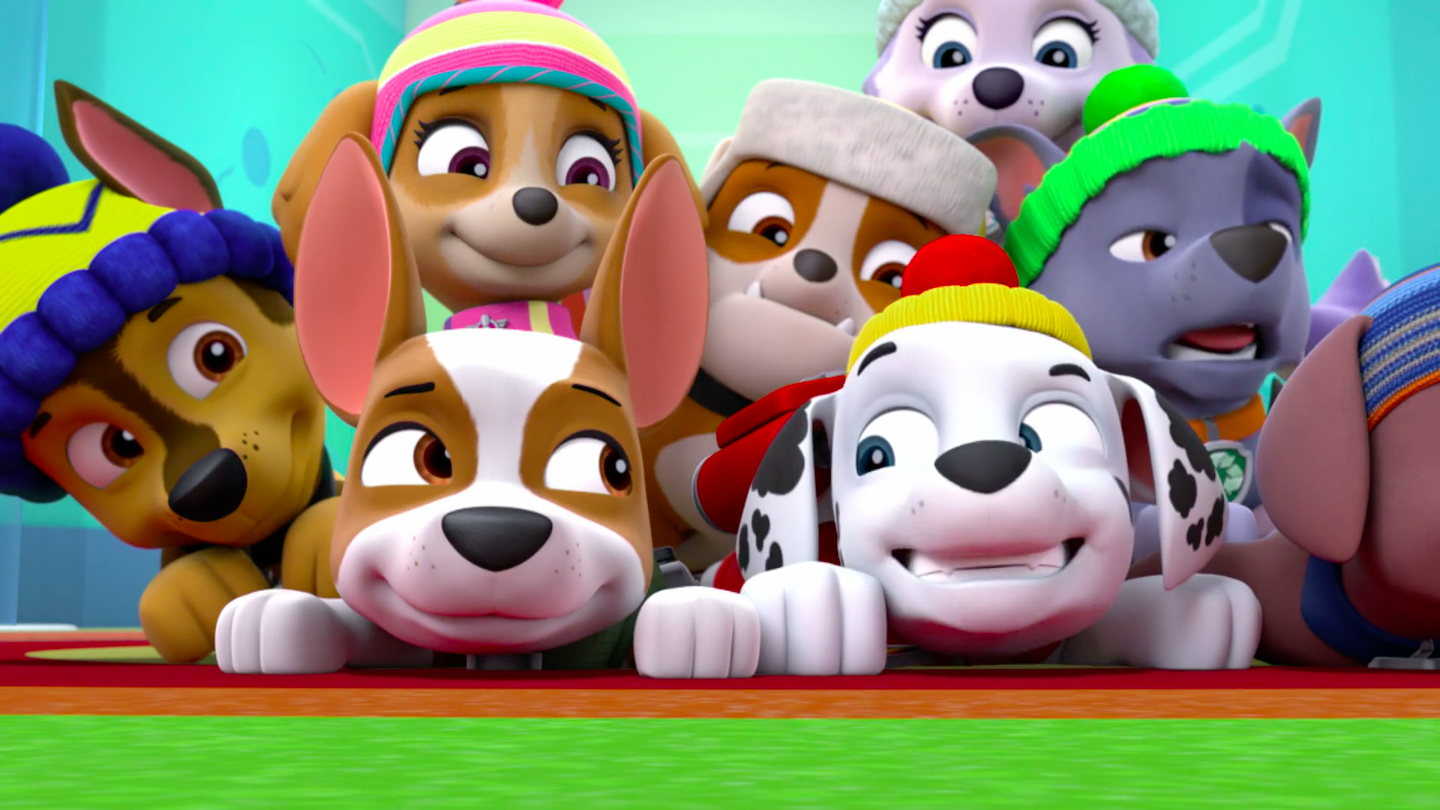 PAW Patrol images Tracker HD wallpaper and background photos