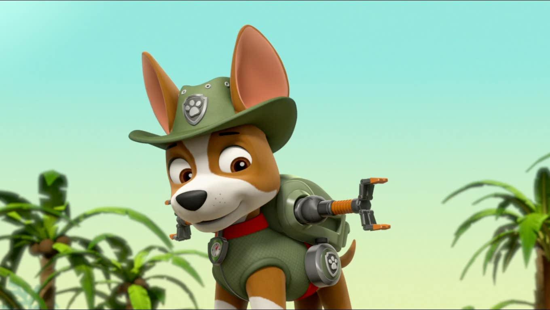 tracker  paw patrol patrulla de cachorros foto 40716803
