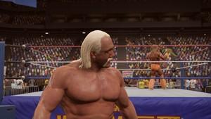 美国职业摔跤 2K15 PS4