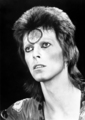 Ziggy Stardust - ziggy-stardust photo