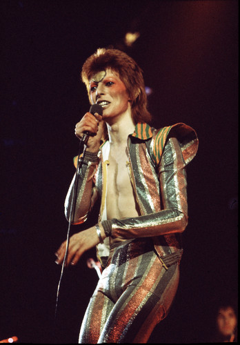 Ziggy Stardust fond d'écran titled Ziggy Stardust