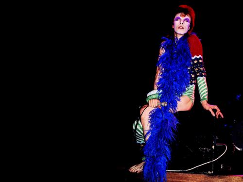 Ziggy Stardust 壁紙 entitled Ziggy Stardust