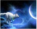howl.PNG - fantasy photo