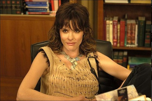 Laws of Attraction वॉलपेपर titled laws of attraction parker posey