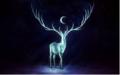 moon deer.PNG - fantasy photo