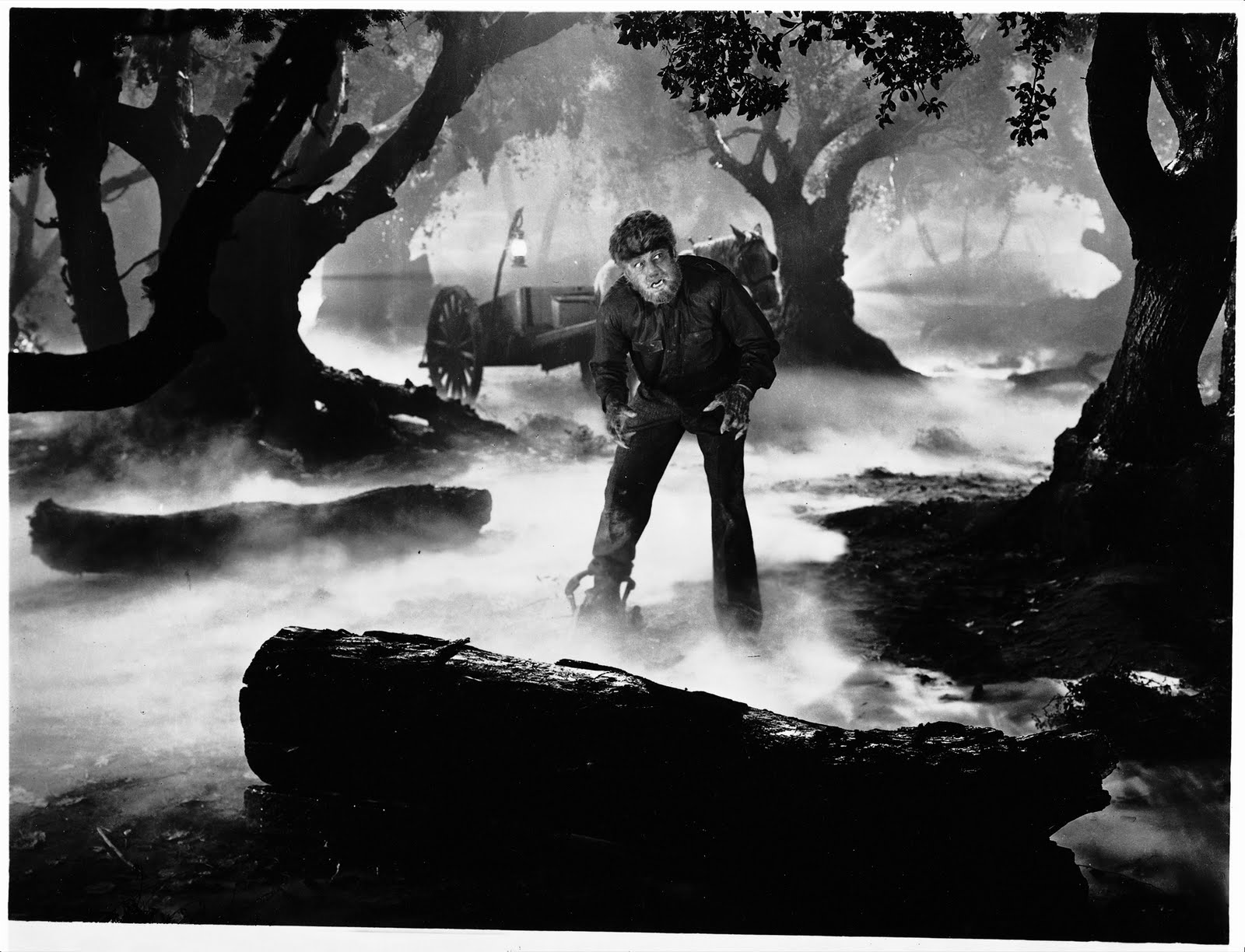 the wolf man images newclubimage hd wallpaper and background photos