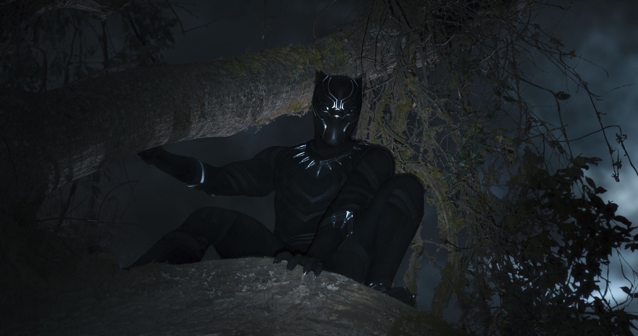 Top Black Panther images 'Black Panther' Promotional Still HD  DI05
