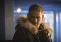 /citizen cold with various arrowverse cast members - wentworth-miller photo