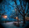 153035 Beautiful Winter Night