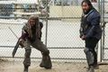 8x04 ~ Some Guy ~ Ezekiel and Jerry - the-walking-dead photo