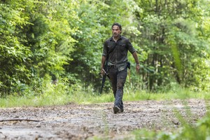 8x06 ~ The King, the Widow and Rick ~ Rick