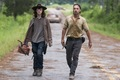 8x08 ~ How It's Gotta Be ~ Carl and Rick - the-walking-dead photo