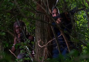 8x08 ~ How It's Gotta Be ~ Michonne and Tara