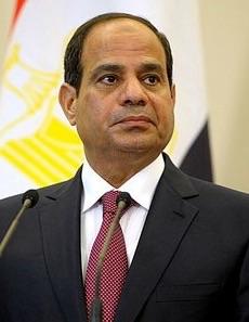 Abdel Fattah el Sisi NOT PRESIDENT OF EGYPT