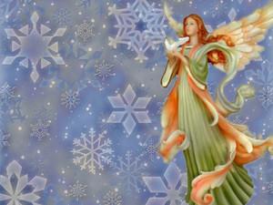 क्रिस्मस एंजल ❅