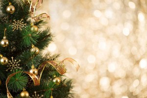 圣诞节 树