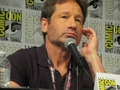 David Duchovny SDCC2017 Audible Panel - david-duchovny photo