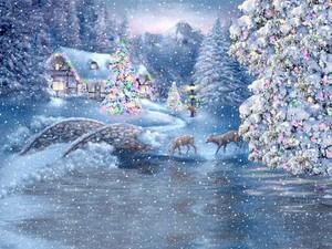 Dreamy Winter