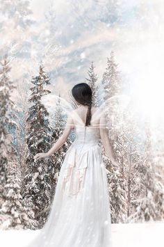 Daydreaming wallpaper called Elegant Winter