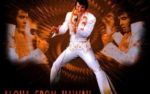 Elvis Presley1