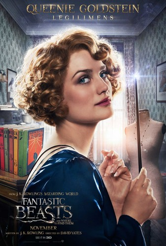 Fantastic Beasts and Where to Find Them fondo de pantalla titled Fantastic Beasts and Where to Find Them