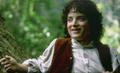 Frodo Baggins - frodo photo