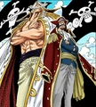 roger and whitebeard - one-piece photo
