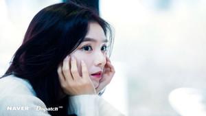 Irene 12