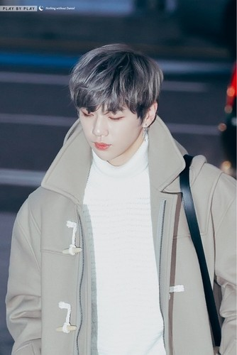 Wanna One wallpaper entitled Kang Daniel💝