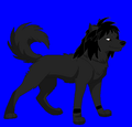 Me as a Omega Wolf - alpha-and-omega fan art