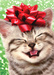 Merry Kittymas - kittens icon