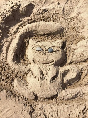 Mew in the sand