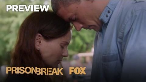 Michael And Sara 3 Prison Break Cast Photo 40834007 Fanpop
